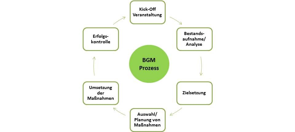 graphik-bgm-prozess-960x430